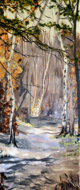Sherwood Forest Pathway