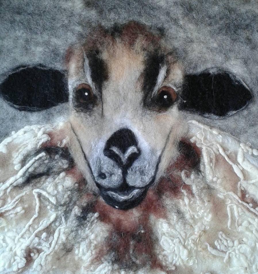Welsh Badger Face