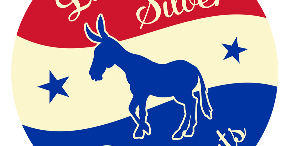 Little Silver Democratic Club: Candidate Event