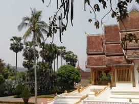 Laos & Mekong (3).jpeg