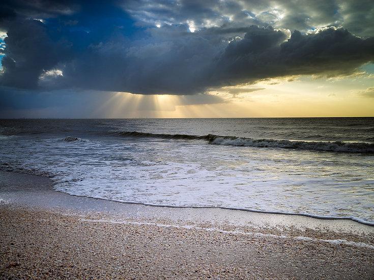 Sanibel Seashell Beach