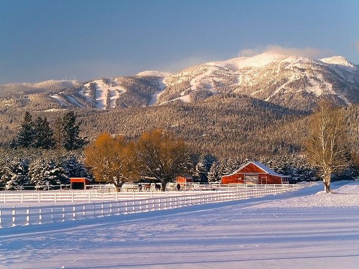 Whitefish Winter Barn
