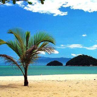 Praia Cocanha