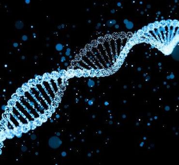 DNA strand.jpg