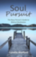 Soul Pursuit: The Busy Person's Guide to Biblical Meditation book cover