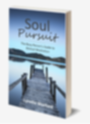 Cover to book--Soul Pursuit: The Busy Person's Guide to Biblical Meditation