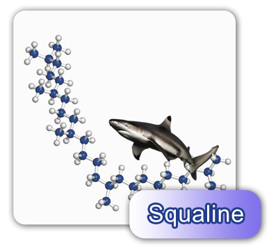 Extracted from the liver of sharks residing deep in the ocean, it can activate cells and increase oxygen intake, repair damaged cells, increase metabolism and blood circulation, strengthen body immune system, remove toxins of the body, regulate pain and restore physical health.
