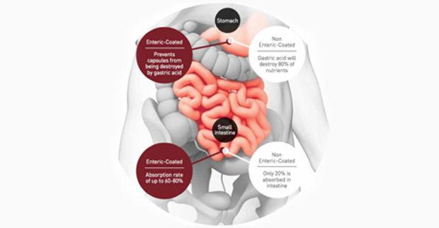 Health Supplement - PURTIER Placenta