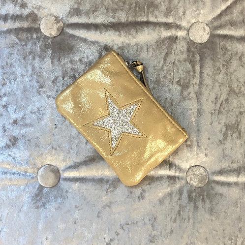 Metallic gold coin purse