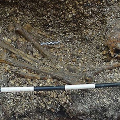 The Oldest Known Human Burial Was Just Discovered In Lower Central America