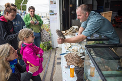 Engaging Exhibits at your Event- photo by VT Fish and Wildlife