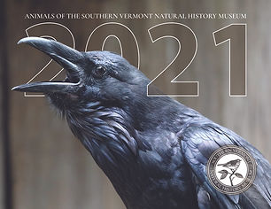 2021 cover final2 RS.jpg