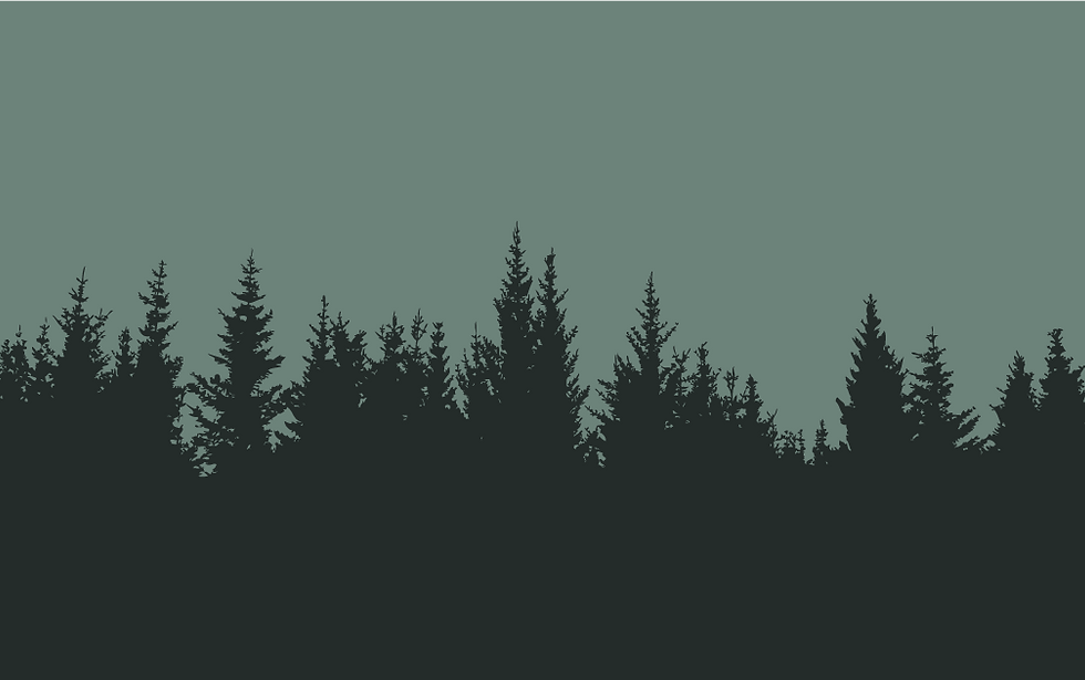 Pine-Silhouette-background.png