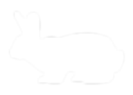 Rabbit-Silhouette-museum.png