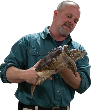 Person holding a snapping turtle