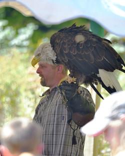 Live Birds of Prey- photo by Bill Dean