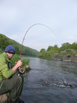 Une pêche passionante