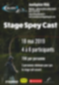 Stage Spey Cast 2019.png
