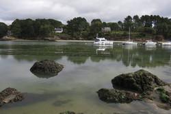 Pêche du bar à vue en eau claire