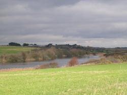 L'étang de St Vio