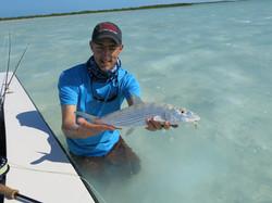 Jolie bonefish de tailel moyenne