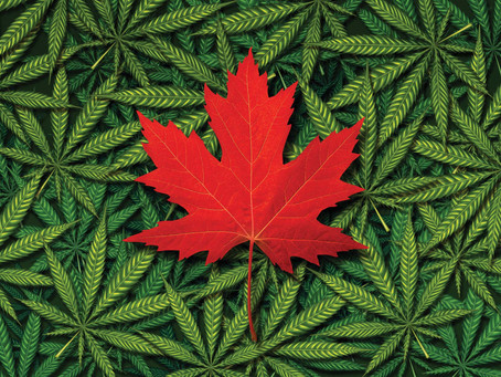 Canadian provinces restrict use of medical marijuana in workers comp