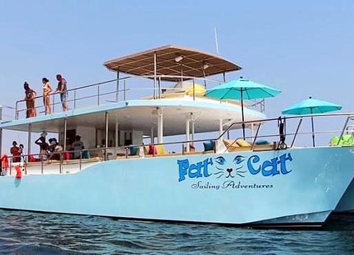 Ally Cat Sailing Sailing Adventures Birthday Sunset Cruise