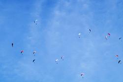 Many Parachutes