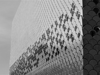 Fish scale facade