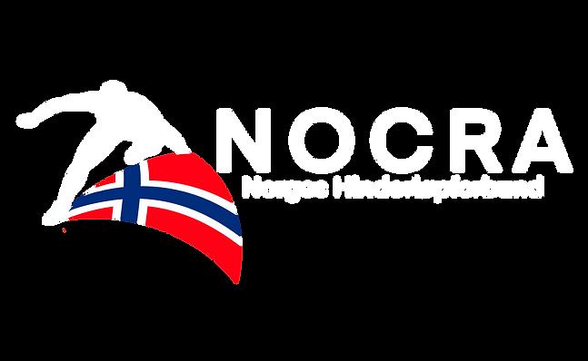 Nocra logo hvit uten bakgrunn.png