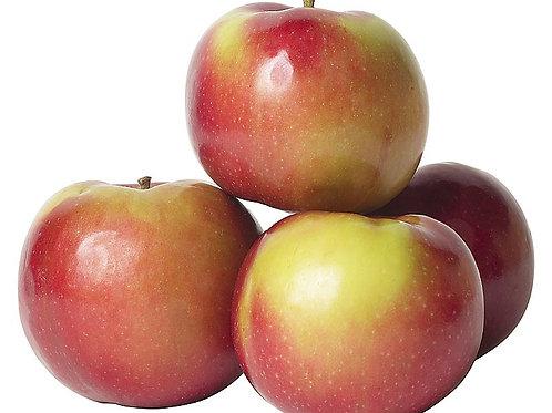 McIntosh Apples 3 lbs