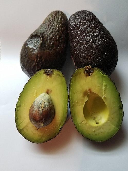 SALE - RIPE - Avocados