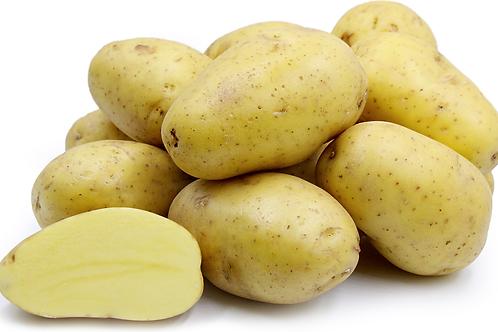 Yukon Gold Potatoes (per pound)