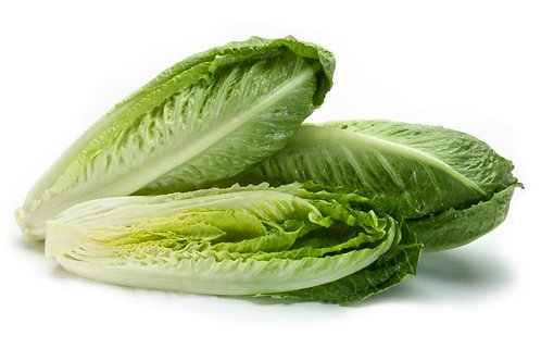 Romaine Hearts x3 (Packaged)