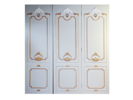 Custom Robe Doors