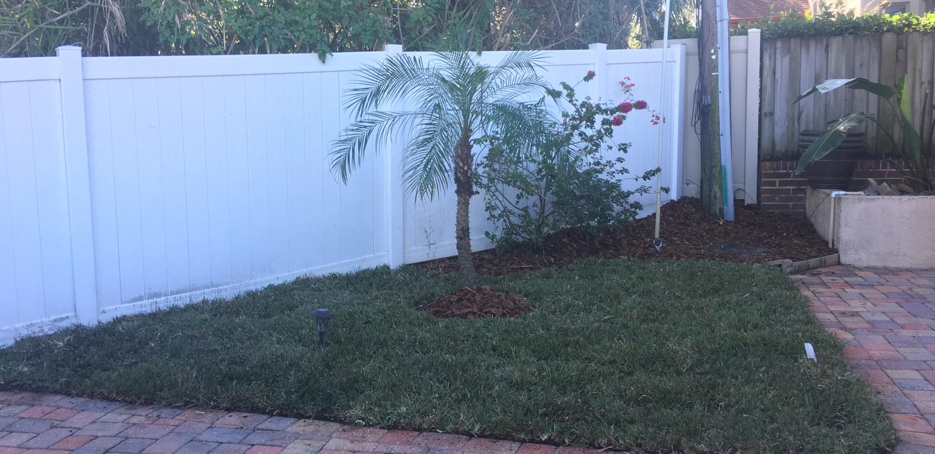 grass corner after.JPG