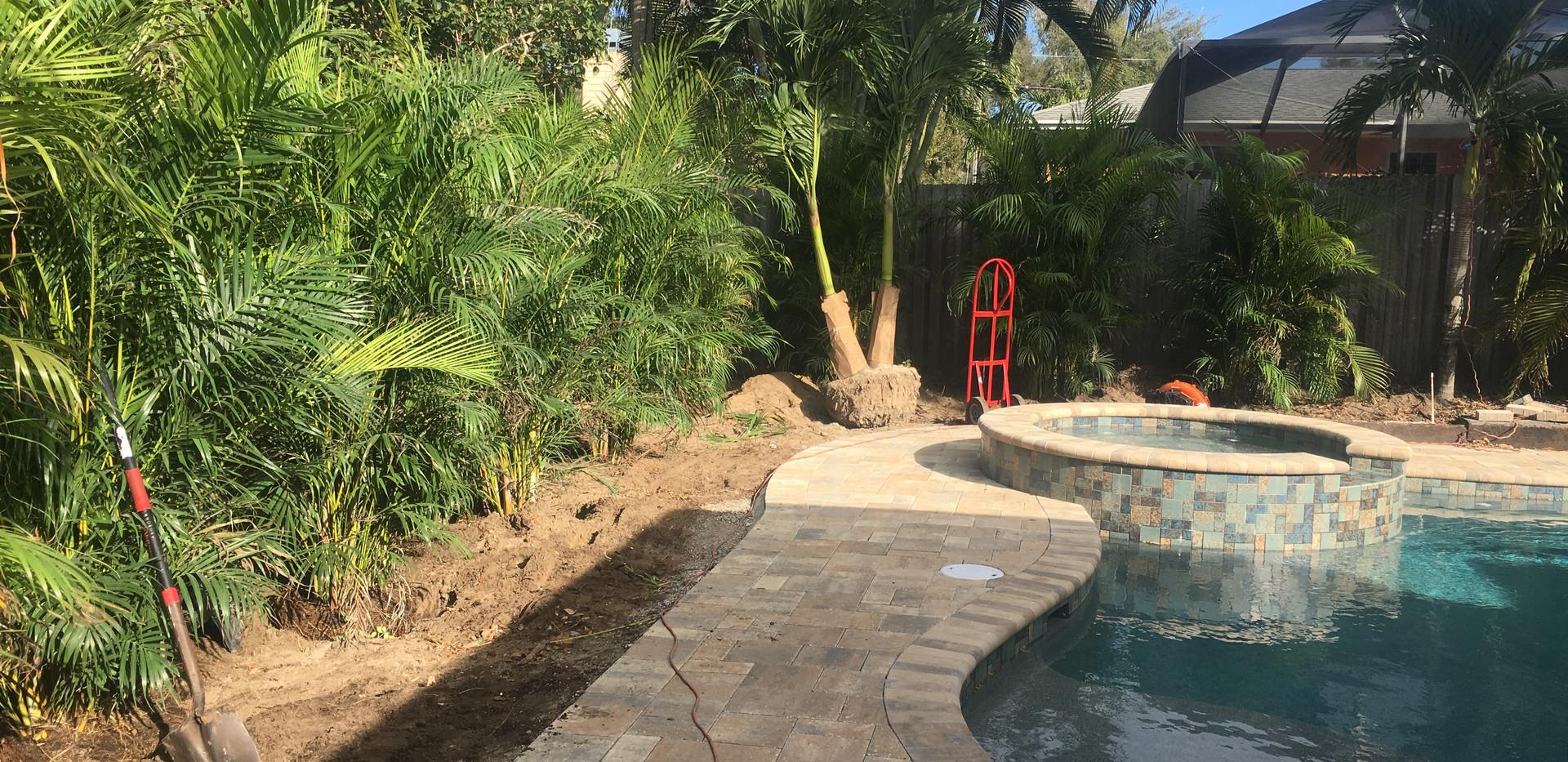pool area before.JPG