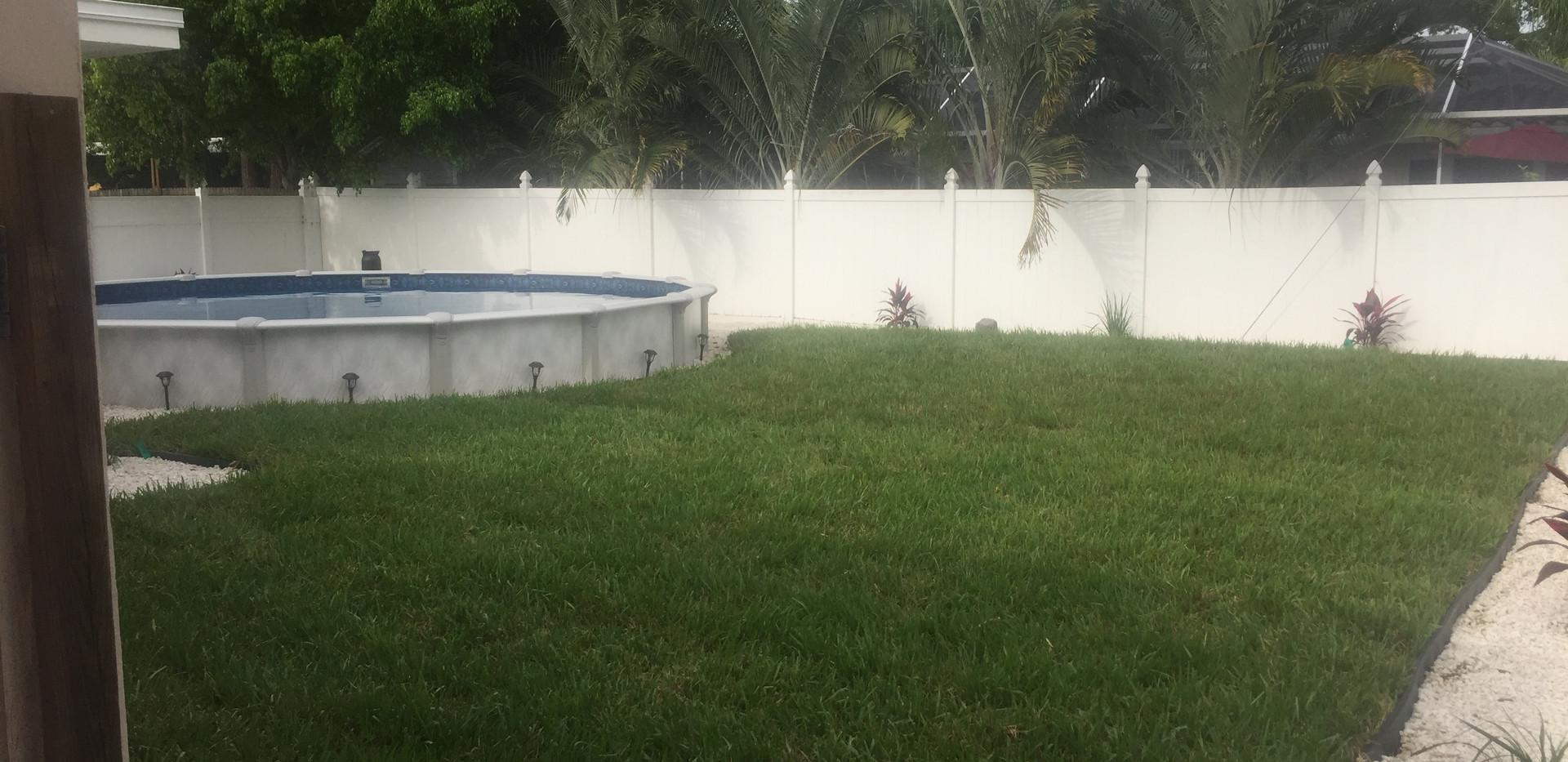 grass after.JPG