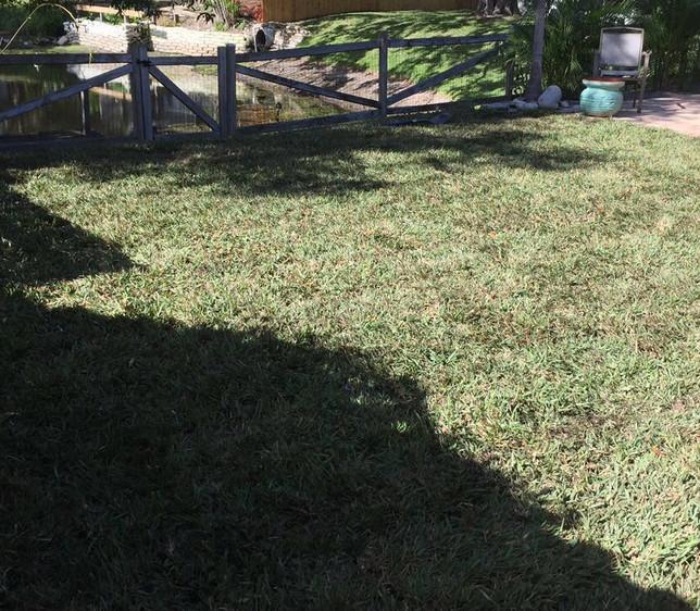after grass.JPG