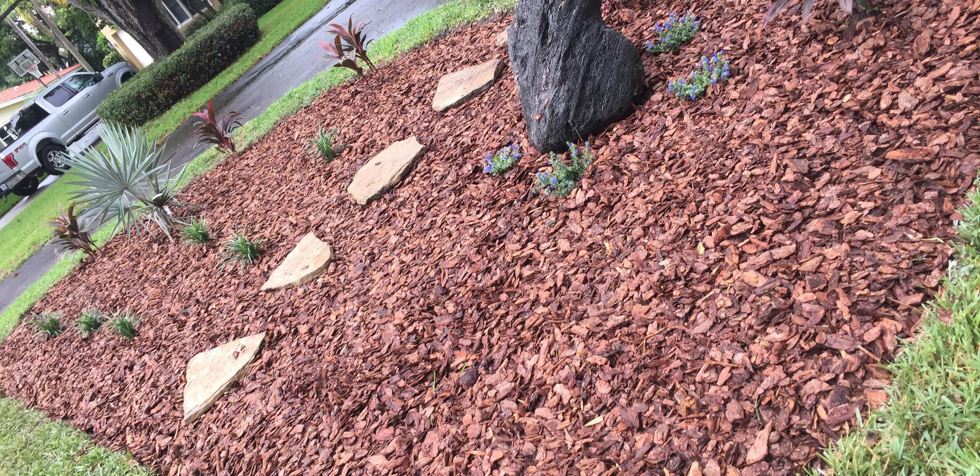 landscape mulch.JPG