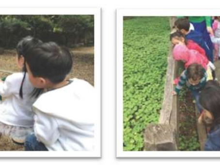 2018 Mandarin Kids Preschool End-of-Year Celebration