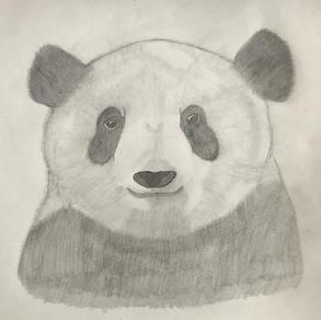 Panda, John Laurence Pagatpat (Level 1)
