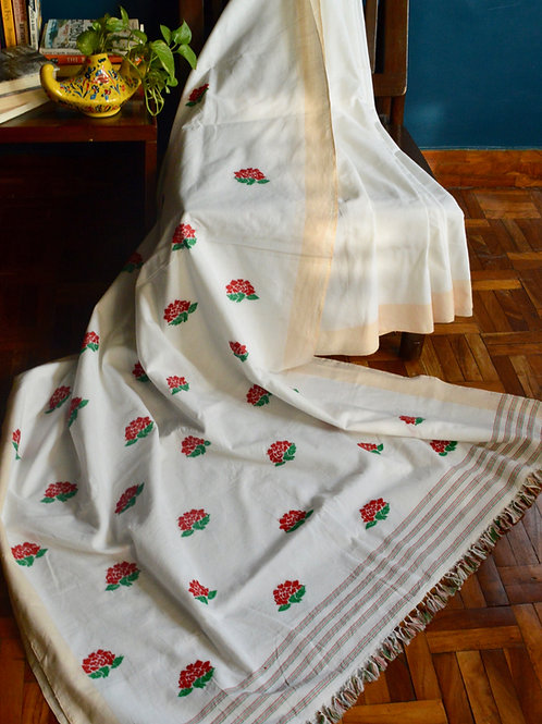 White cotton saree with beige border