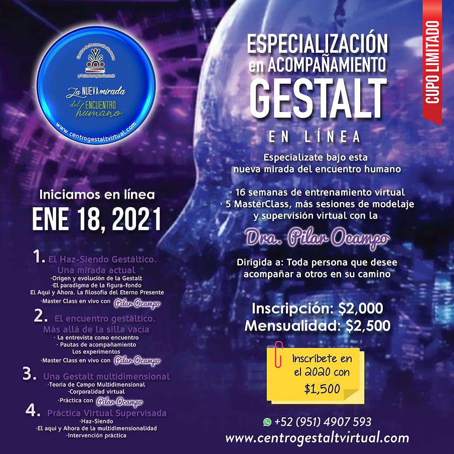 ESPECIALIZACION2021.png