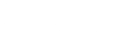 logo-NavaGation-white.png
