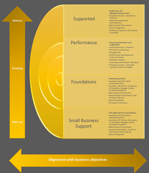 HR Solutions Graphic for website.png