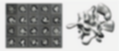 macromolecular_assembly_edited_edited_edited.png