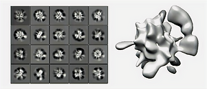 macromolecular_assembly_edited_edited_edited.png
