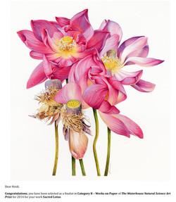 Heidi-Willis_Waterhouse-Natural-History-Art-Prize.jpg