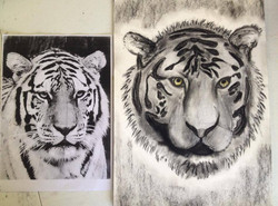 Charcoal sketch with original image